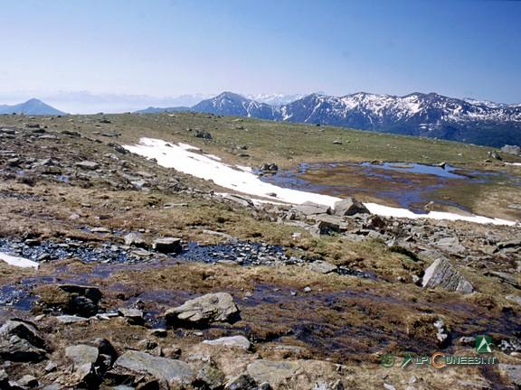 4 - Il tratto di percorso su terreno acquitrinoso (2004)